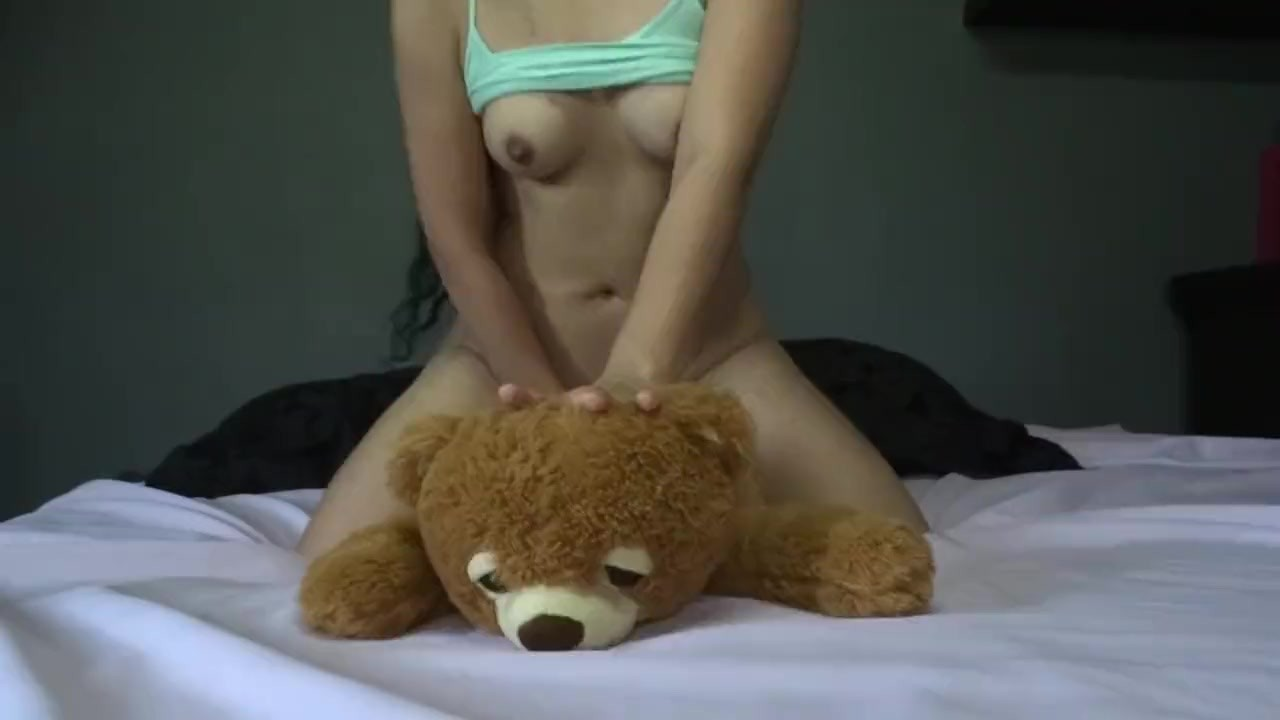 Bdsm teddy bear