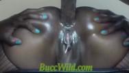 Single tube black 16 strip light All anal vol.16 ghetto girls.....buccwild, miss safire, cocoasouniue