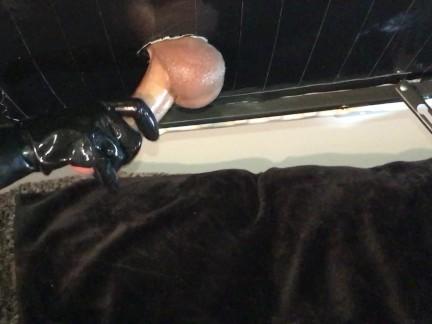 Петух Доильный стол с латексными перчатками