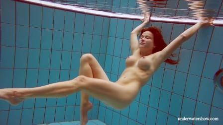 Metalocalypse adult swim wiki Fandom
