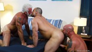 Cubs gay - 2 older bears double down on younger cub - bearback