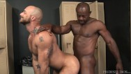 Big black dick fat gay Extra big dicks - aaron trainer cant conceal his massive erection